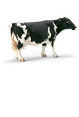 HOLSTEIN COW (SCHLEICH)