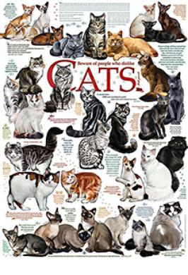 CAT QUOTES 1000 PC JIGSAW PUZZLE