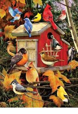FALL BIRDS JIGSAW PUZZLE