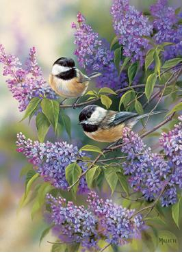CHICKADEES AND LILACS 1000 PC JIGSAW PUZZLE